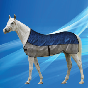 Aqua Coolkeeper for Horses Cooling Blanket Pacific Blue