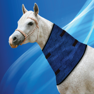 Aqua Coolkeeper for Horses Neckcooler Pacific Blue
